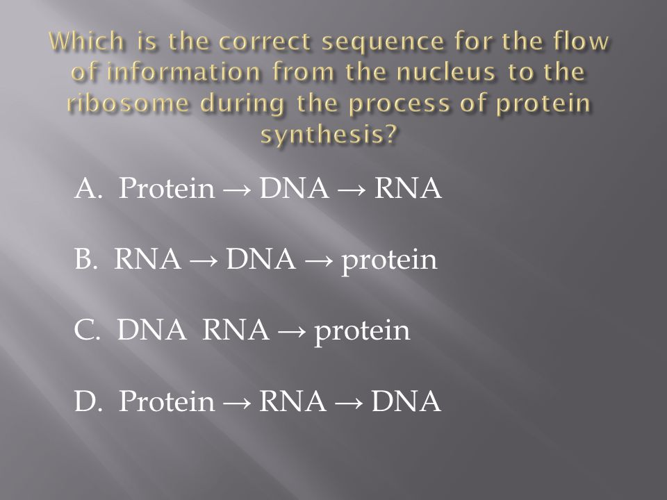 A. Protein → DNA → RNA B. RNA → DNA → protein C. DNA RNA → protein D. Protein → RNA → DNA