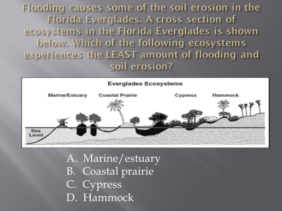 A. Marine/estuary B. Coastal prairie C. Cypress D. Hammock