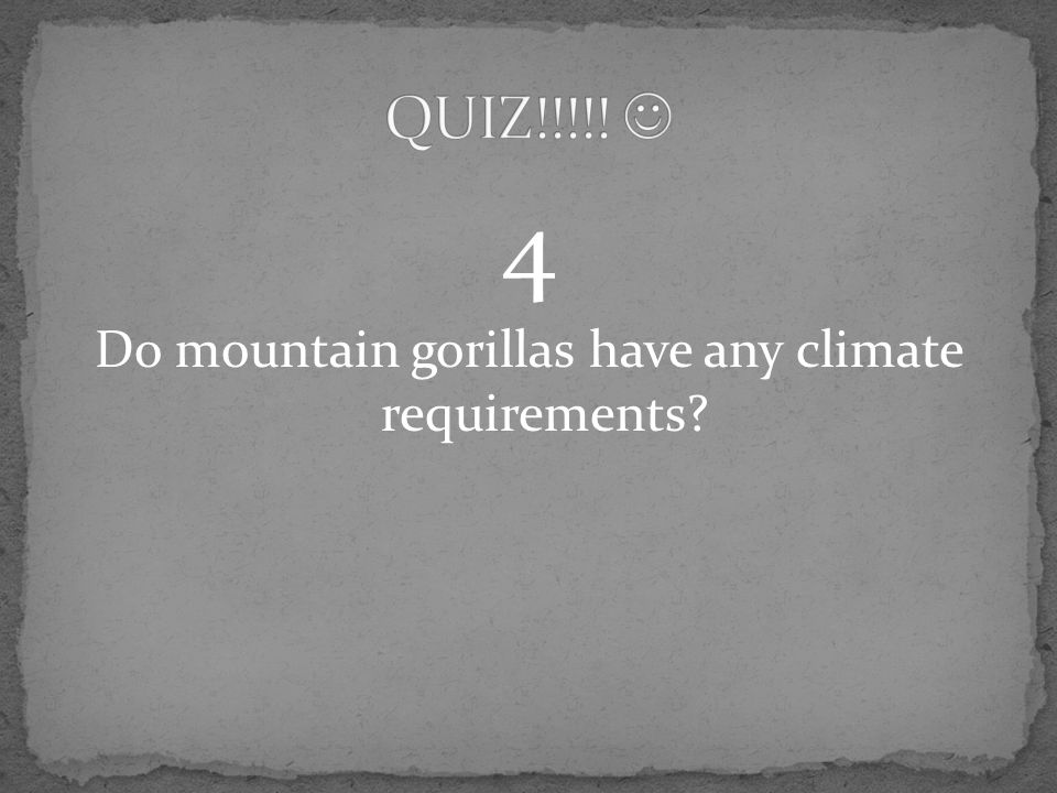 4 Do mountain gorillas have any climate requirements