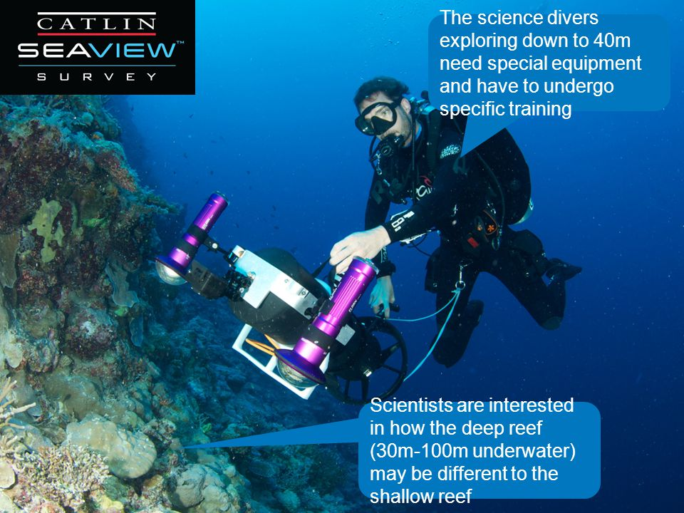 Scientists are interested in how the deep reef (30m-100m underwater) may be different to the shallow reef The science divers exploring down to 40m need special equipment and have to undergo specific training