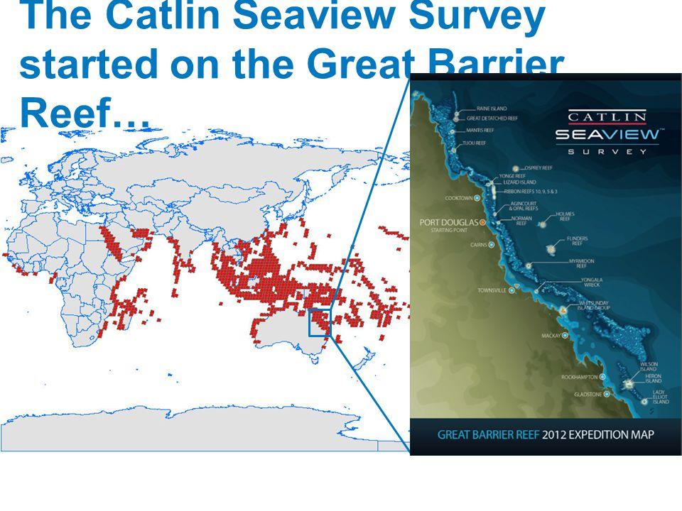 Great Barrier Reef – Marine Life Cards Triton s trumpet Charonia tritonis KingdomAnimal (Animalia) PhylumMollusc(Mollusca) ClassGastropod (Gastropoda) Triton s trumpet is a large predatory sea snail.