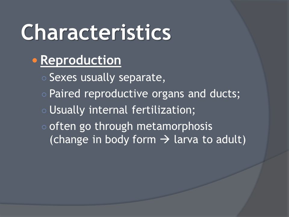 Reproduction ○ Sexes usually separate, ○ Paired reproductive organs and ducts; ○ Usually internal fertilization; ○ often go through metamorphosis (cha
