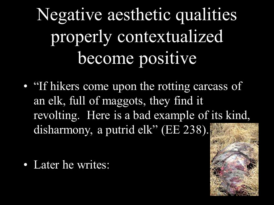 Negative aesthetic qualities properly contextualized become positive If hikers come upon the rotting carcass of an elk, full of maggots, they find it revolting.