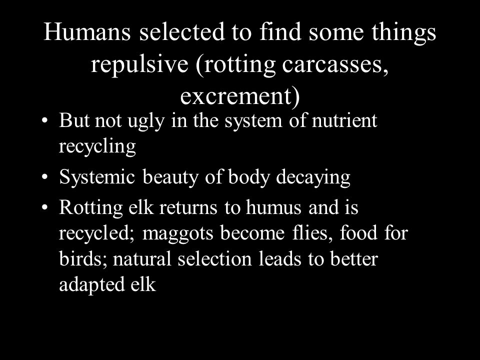 Humans selected to find some things repulsive (rotting carcasses, excrement) But not ugly in the system of nutrient recycling Systemic beauty of body decaying Rotting elk returns to humus and is recycled; maggots become flies, food for birds; natural selection leads to better adapted elk