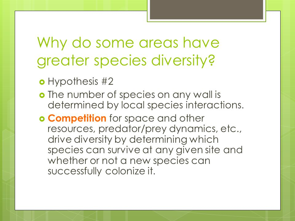 Why do some areas have greater species diversity?  Hypothesis #2  The number of species on any wall is determined by local species interactions.  C