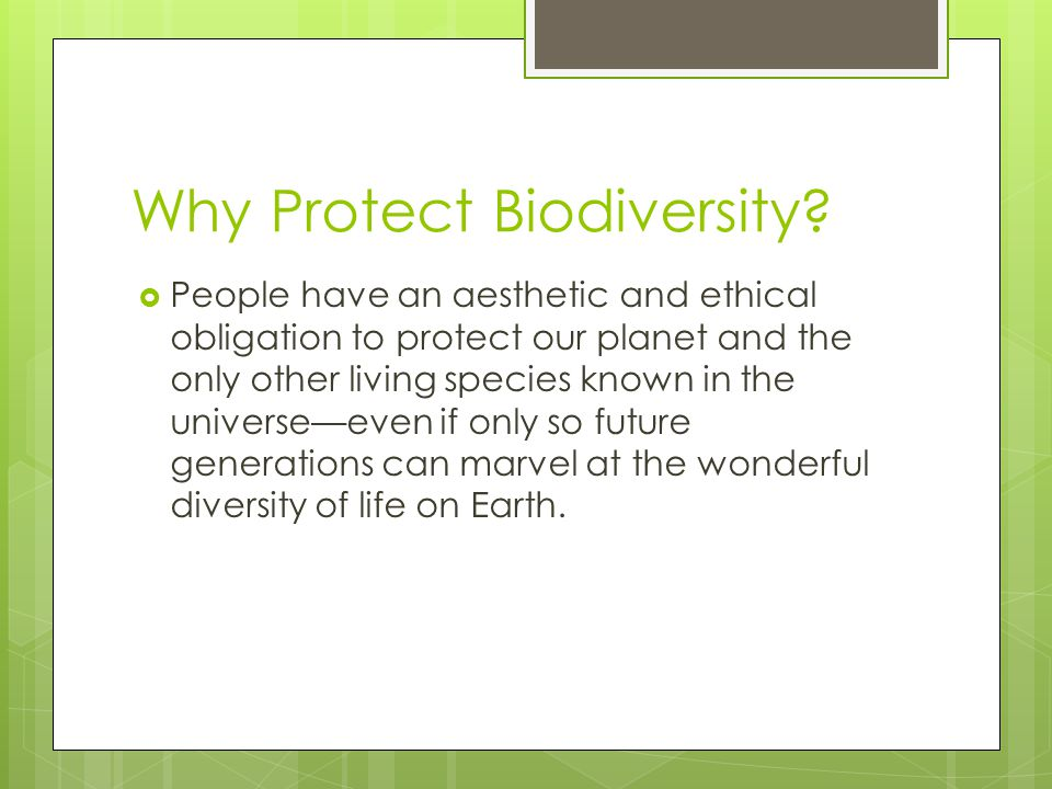 Why Protect Biodiversity?  People have an aesthetic and ethical obligation to protect our planet and the only other living species known in the unive