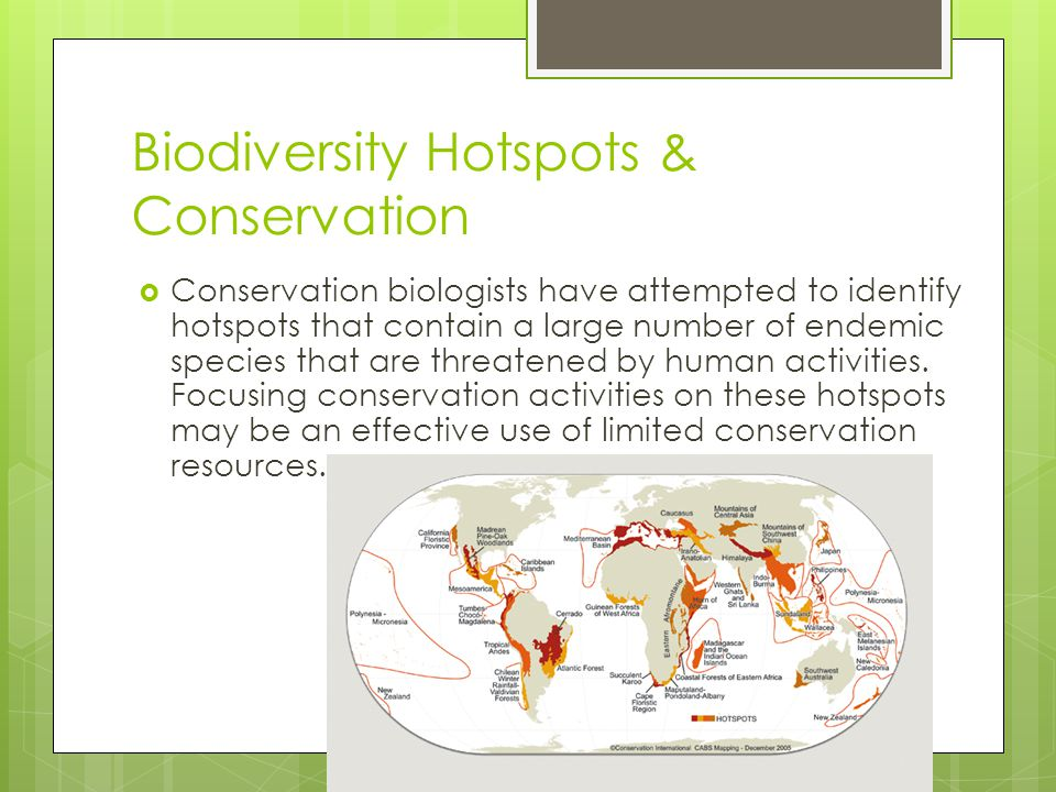 Biodiversity Hotspots & Conservation  Conservation biologists have attempted to identify hotspots that contain a large number of endemic species that