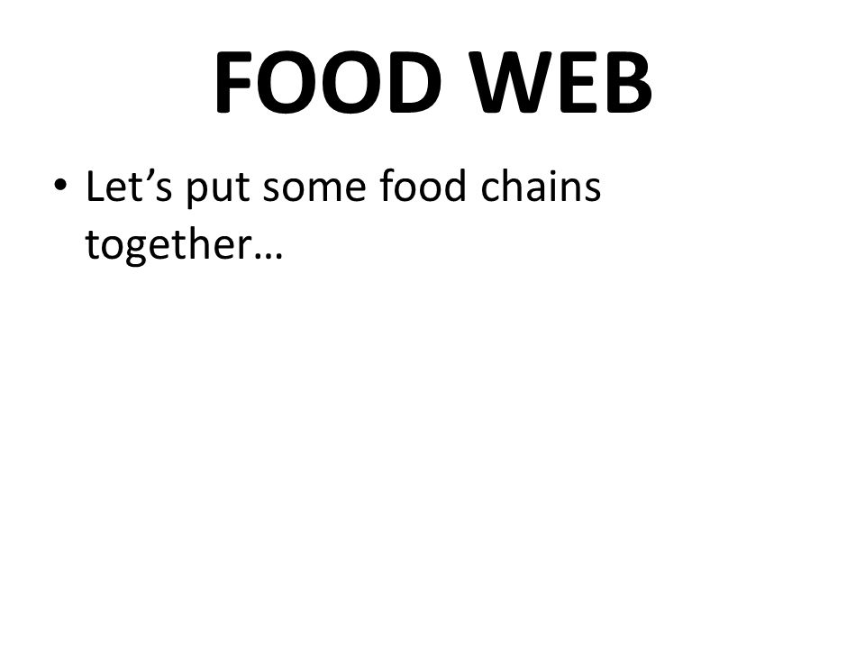 FOOD WEB Let's put some food chains together…