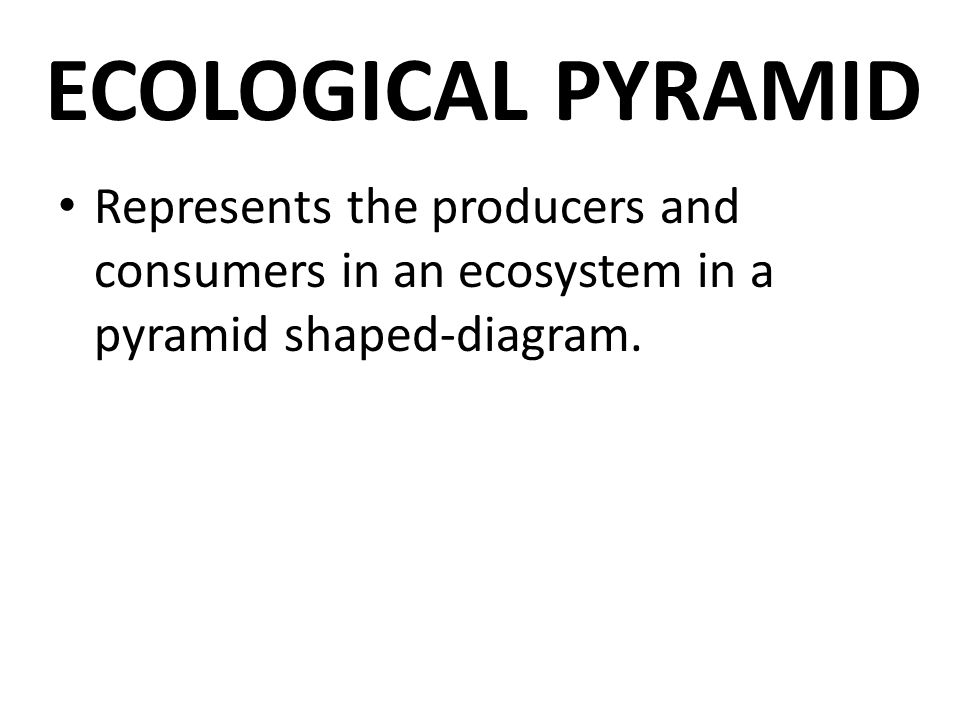 ECOLOGICAL PYRAMID Represents the producers and consumers in an ecosystem in a pyramid shaped-diagram.