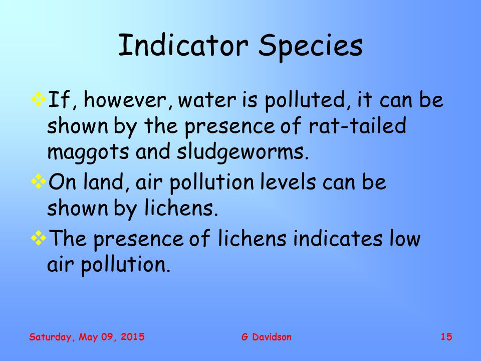 Saturday, May 09, 2015G Davidson15 Indicator Species  If, however, water is polluted, it can be shown by the presence of rat-tailed maggots and sludgeworms.