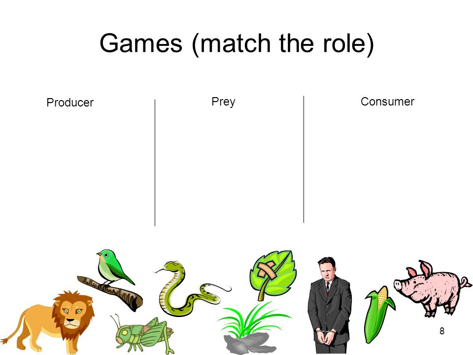 8 Games (match the role) Producer PreyConsumer
