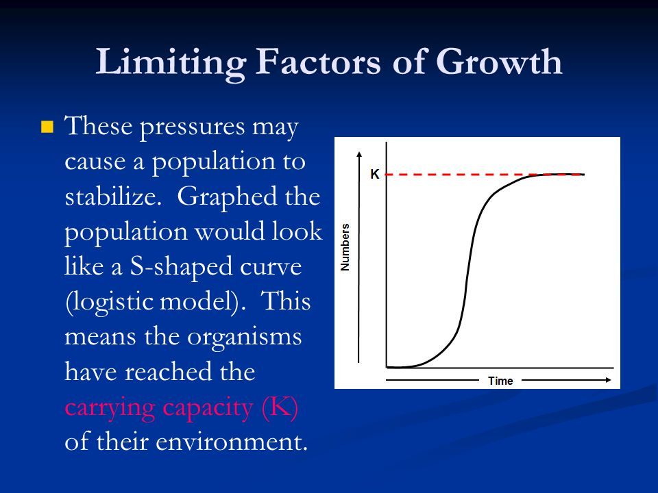 Limiting Factors of Growth These pressures may cause a population to stabilize. Graphed the population would look like a S-shaped curve (logistic mode