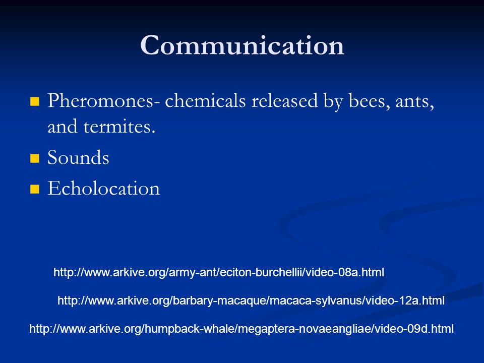 Communication Pheromones- chemicals released by bees, ants, and termites.