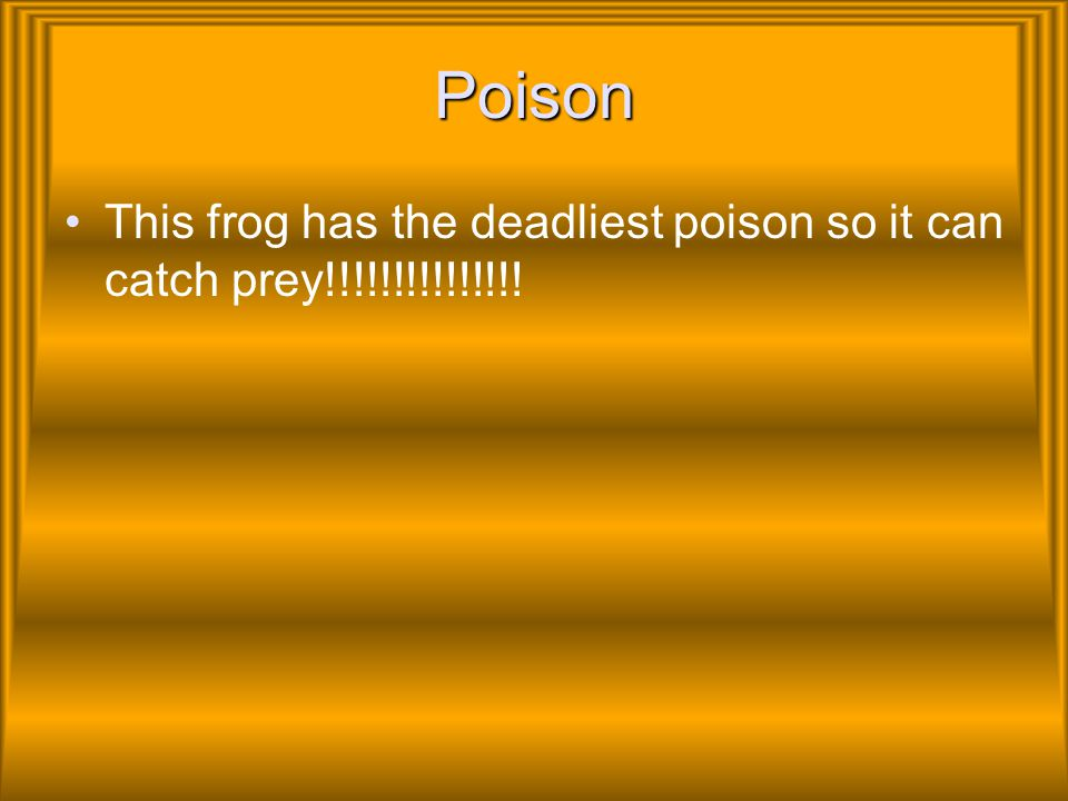 Poison This frog has the deadliest poison so it can catch prey!!!!!!!!!!!!!!!