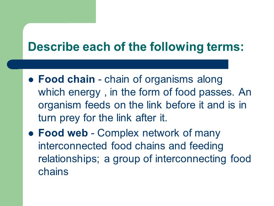 Describe each of the following terms: Food chain - chain of organisms along which energy, in the form of food passes.