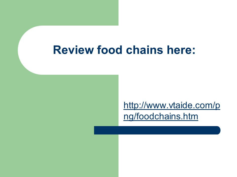 Review food chains here: http://www.vtaide.com/p ng/foodchains.htm