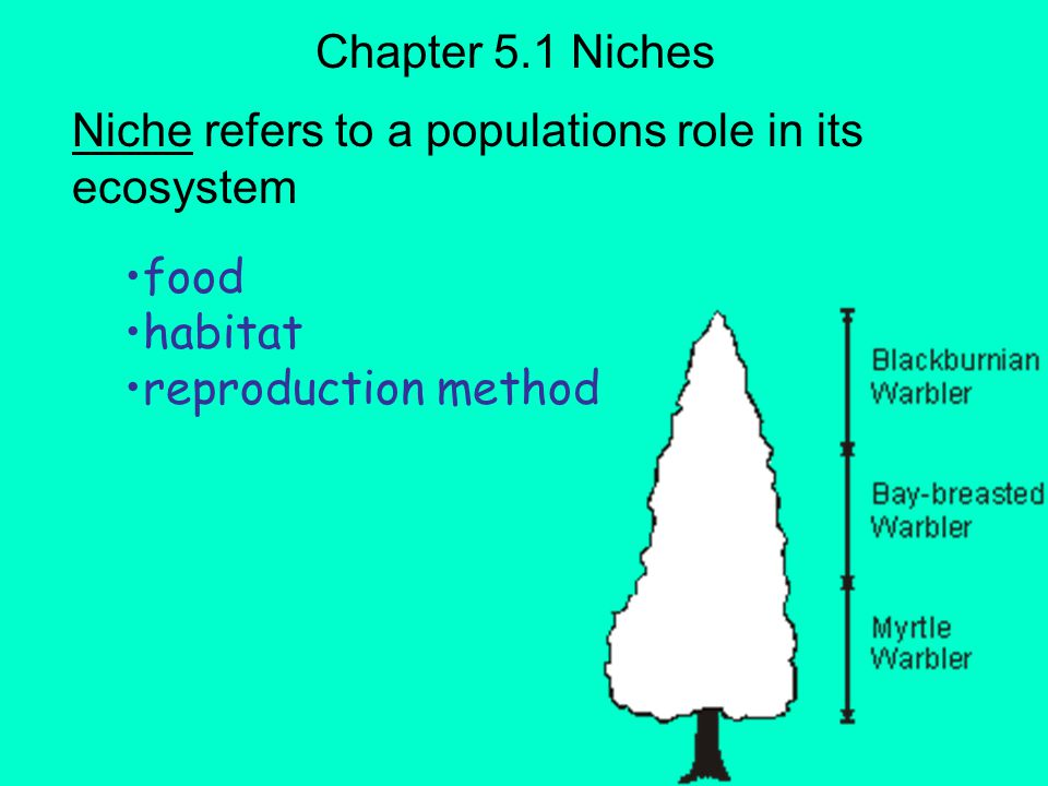 Describe the concept of niche. Examine how interactions between a species and its environment define the species' niche. Chapter 5.1 Habitats & Niches