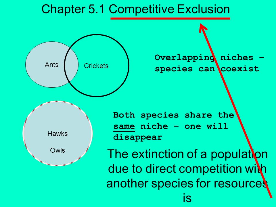 includes both Biotic Competitors Predators Decomposers Population Density Abiotic Chapter 5.1 Niche influence Soil pH Soil Humidity Soil Temperature Air Temperature Wind Speed Sunlight Intensity Soil Nutrients
