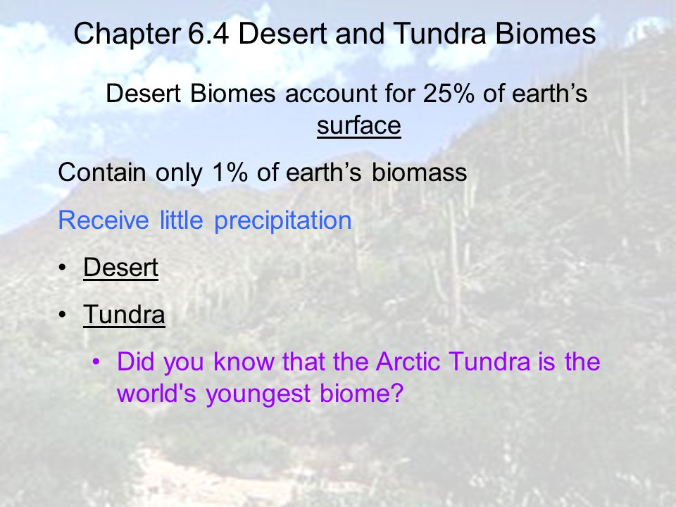 Chapter 6.4 Forest Biomes Forest Biomes account for 75% of earth's biomass Receive abundant precipitation Coniferous (sometimes refered to as 'taiga') Deciduous four distinct seasons, spring, summer, autumn, and winter.