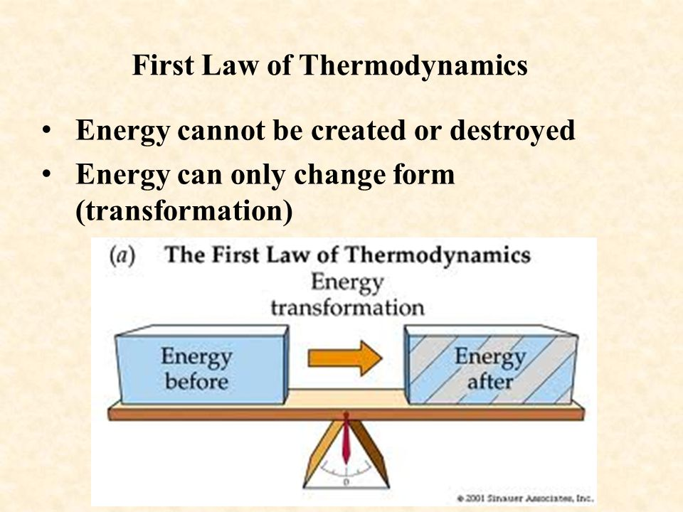 First Law of Thermodynamics Energy cannot be created or destroyed Energy can only change form (transformation)