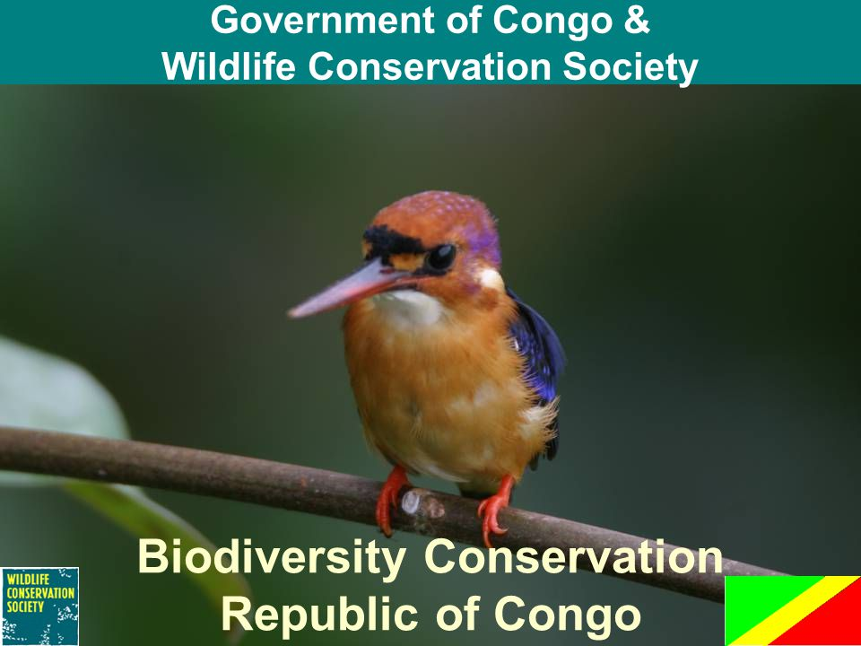 Government of Congo & Wildlife Conservation Society Biodiversity Conservation Republic of Congo
