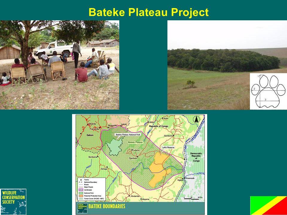 Bateke Plateau Project