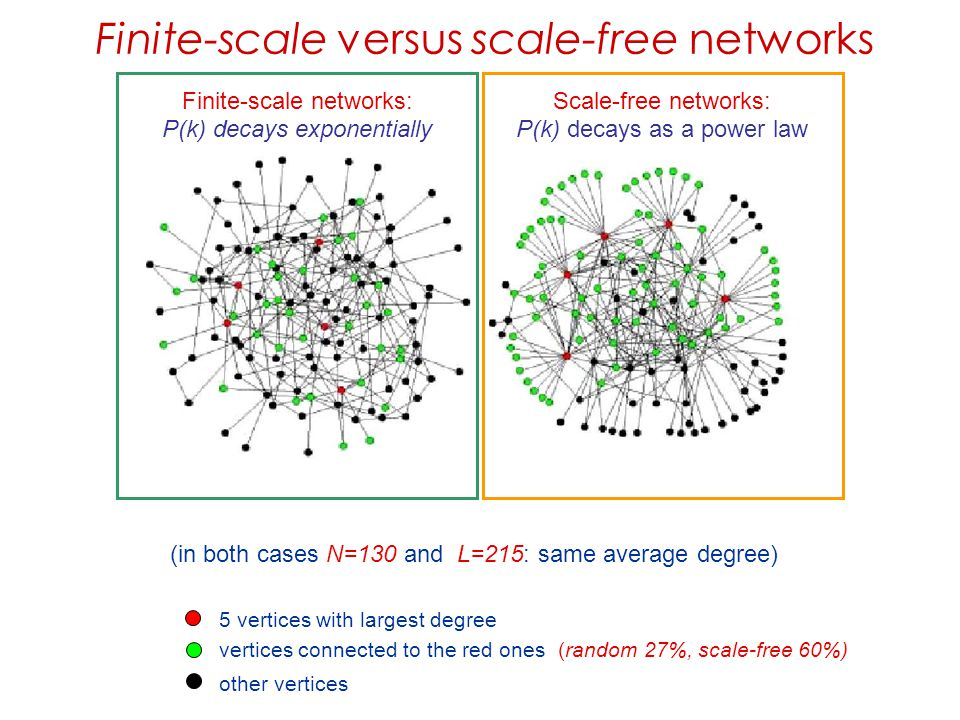 Scale-free networks: P(k) decays as a power law Finite-scale networks: P(k) decays exponentially (in both cases N=130 and L=215: same average degree)