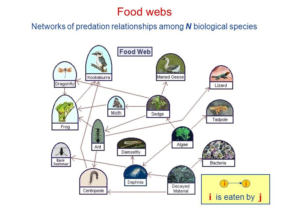 Networks of predation relationships among N biological species i is eaten by j ij