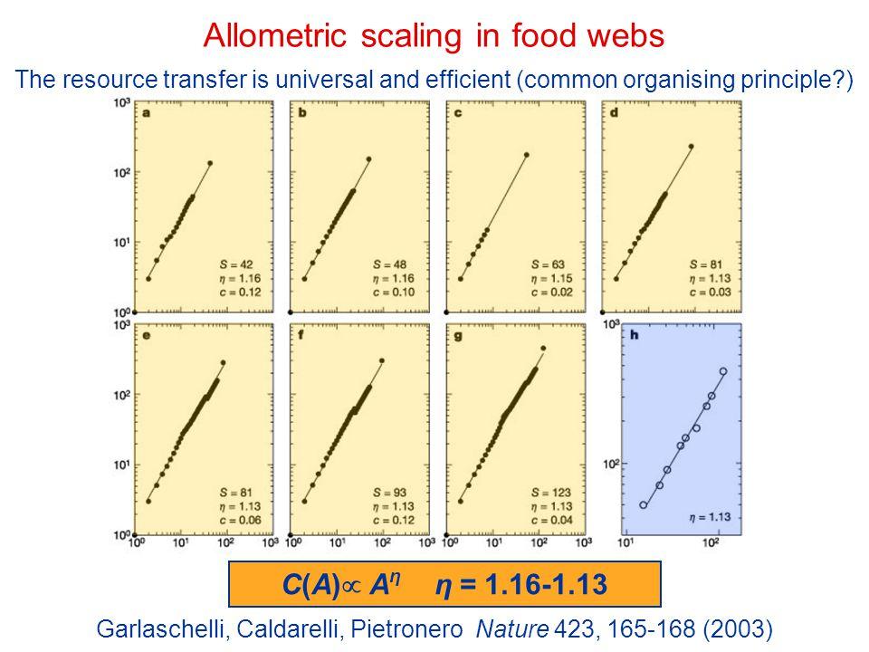 Allometric scaling in food webs Garlaschelli, Caldarelli, Pietronero Nature 423, 165-168 (2003) C(A)  A η η = 1.16-1.13 The resource transfer is univ