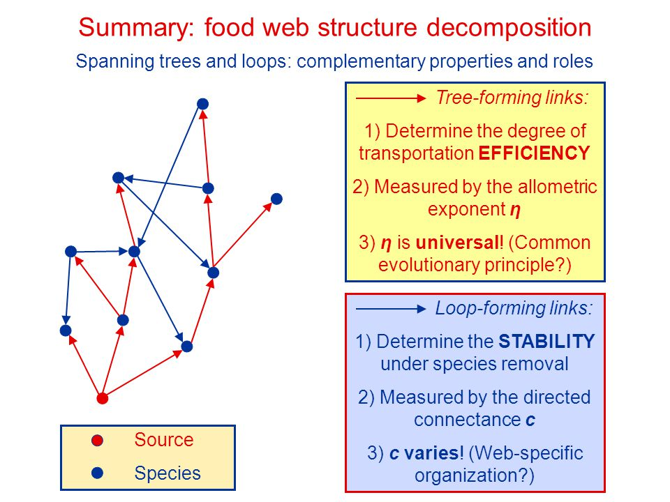 Tree-forming links: 1) Determine the degree of transportation EFFICIENCY 2) Measured by the allometric exponent η 3) η is universal! (Common evolution