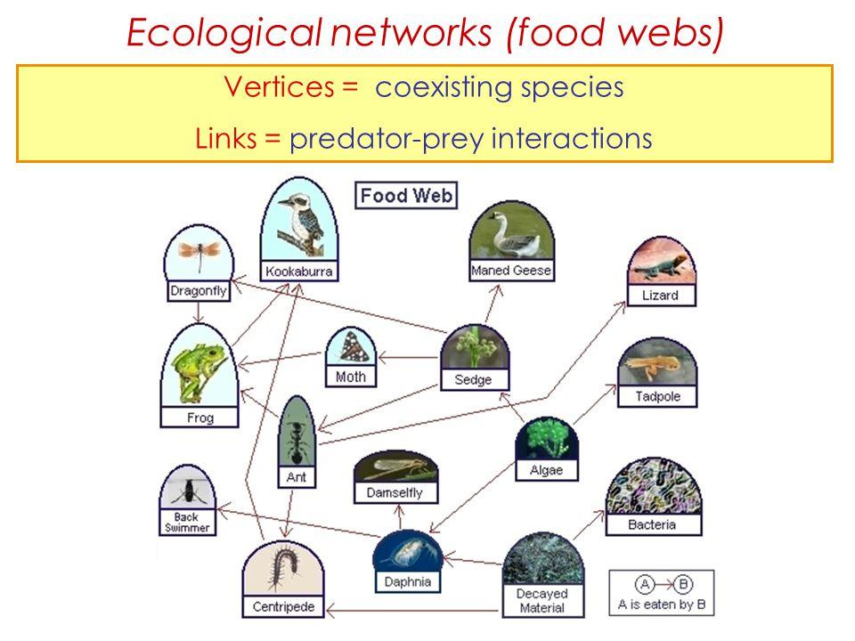 Ecological networks (food webs) Vertices = coexisting species Links = predator-prey interactions
