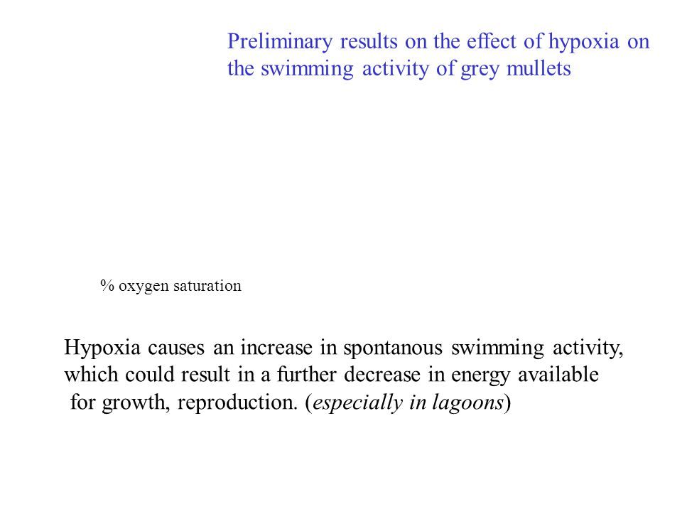 Preliminary results on the effect of hypoxia on the swimming activity of grey mullets Hypoxia causes an increase in spontanous swimming activity, whic