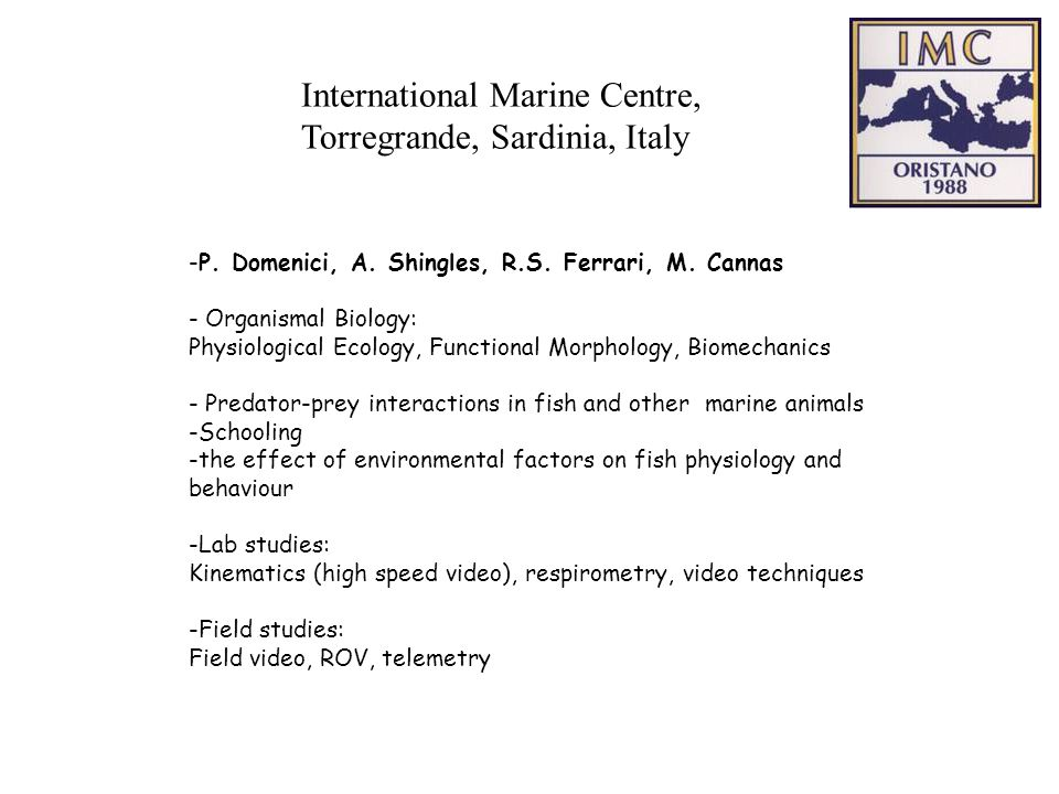 International Marine Centre, Torregrande, Sardinia, Italy -P.