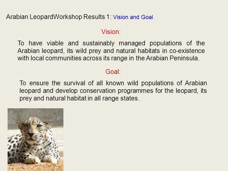 Vision and Goal Arabian LeopardWorkshop Results 1: Vision and Goal Vision: To have viable and sustainably managed populations of the Arabian leopard, its wild prey and natural habitats in co-existence with local communities across its range in the Arabian Peninsula.