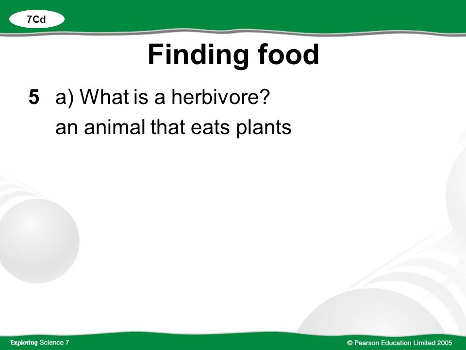 Finding food 5a) What is a herbivore? an animal that eats plants 7Cd