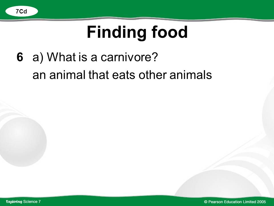 Finding food 6a) What is a carnivore? an animal that eats other animals 7Cd