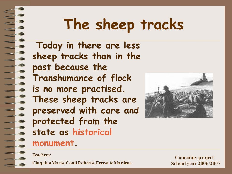 Teachers: Cinquina Maria, Conti Roberta, Ferrante Marilena Comenius project School year 2006/2007 How were the sheep-tracks? They were large 111mt and