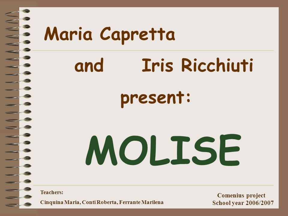 Teachers: Cinquina Maria, Conti Roberta, Ferrante Marilena Comenius project School year 2006/2007 Istituto Statale Comprensivo Molise Altissimo