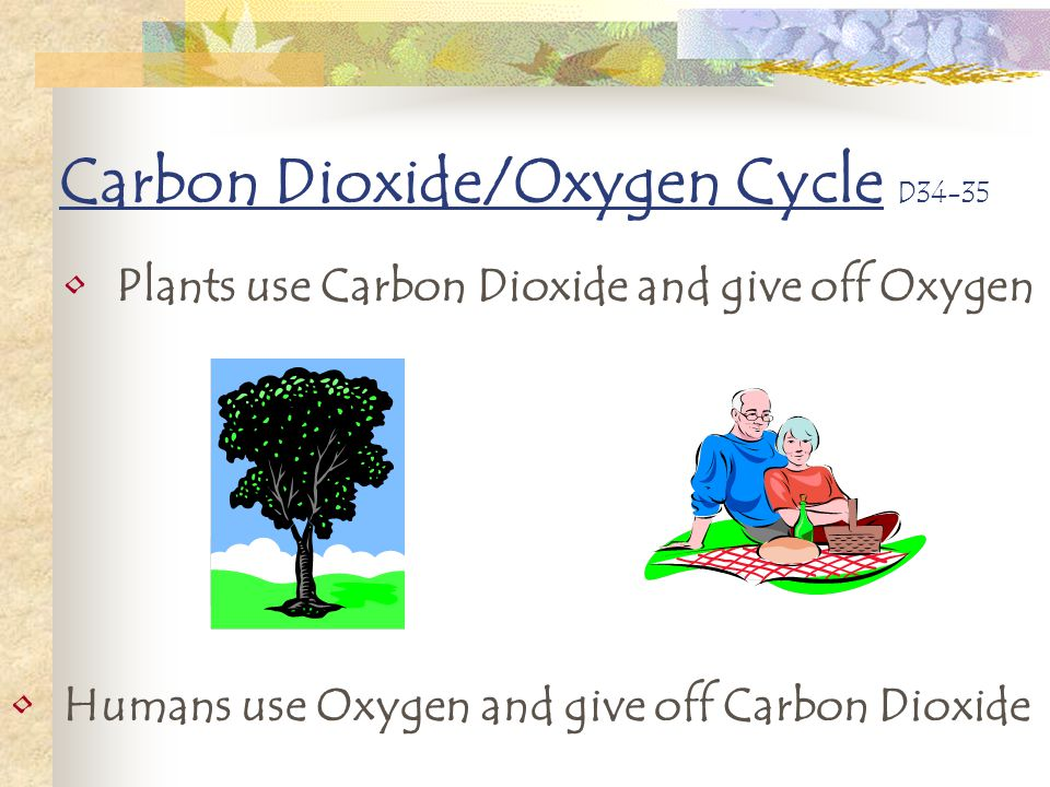 Carbon Dioxide/Oxygen Cycle D34-35 Plants use Carbon Dioxide and give off Oxygen Humans use Oxygen and give off Carbon Dioxide