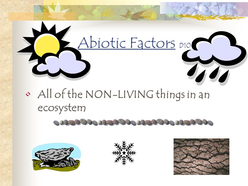Abiotic Factors D10 All of the NON-LIVING things in an ecosystem