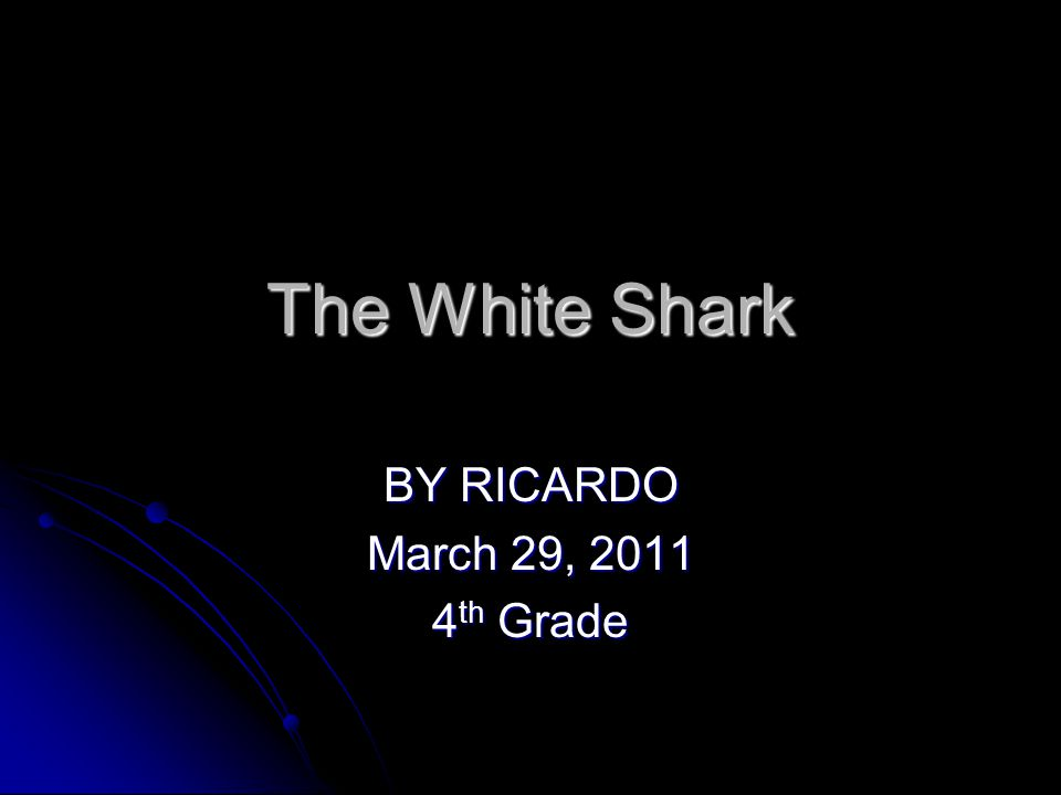 The White Shark BY RICARDO March 29, 2011 4 th Grade