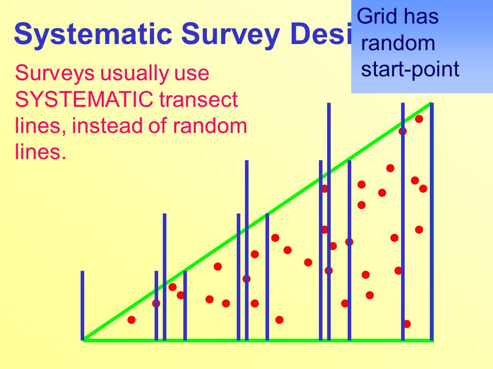 Systematic Survey Designs Surveys usually use SYSTEMATIC transect lines, instead of random lines.