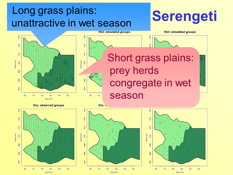 Short grass plains: prey herds congregate in wet season Long grass plains: unattractive in wet season