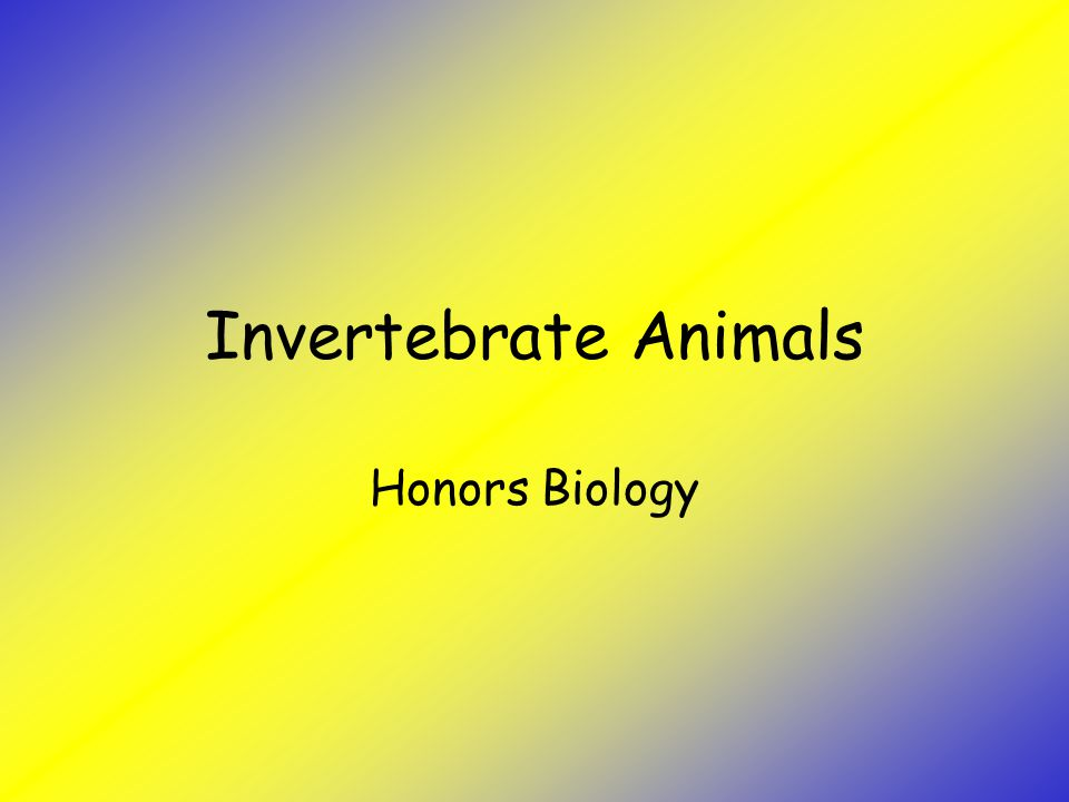 Invertebrate Animals Honors Biology