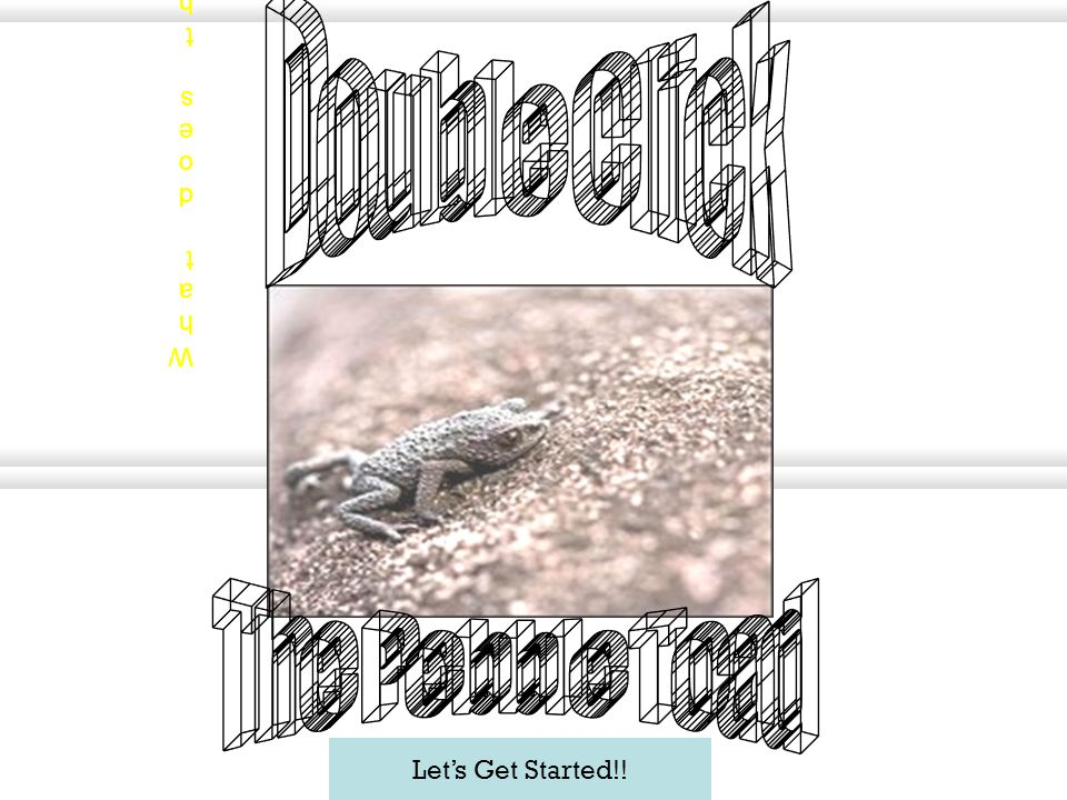 Let's Get Started!! Double click the title and change the text to tell your animal name and name your quiz. What does the pebble toad do for its defen