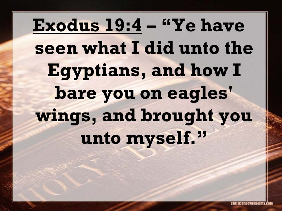 Exodus 19:4 – Ye have seen what I did unto the Egyptians, and how I bare you on eagles wings, and brought you unto myself.