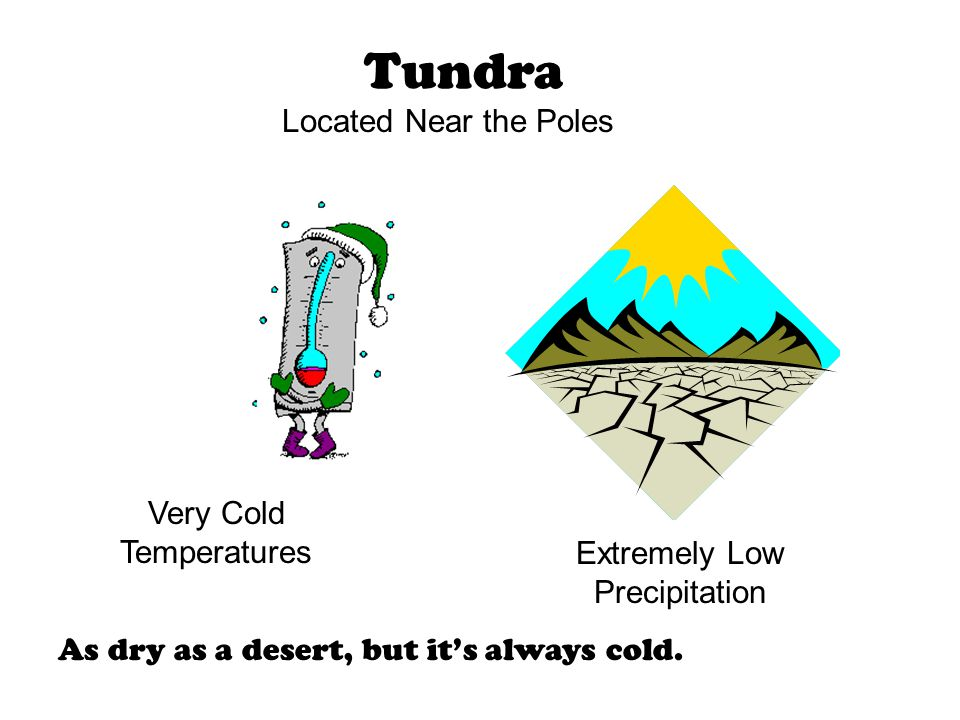 Tundra Extremely Low Precipitation Very Cold Temperatures As dry as a desert, but it's always cold. Located Near the Poles