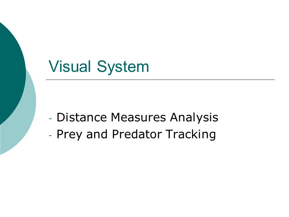 Visual System - Distance Measures Analysis - Prey and Predator Tracking