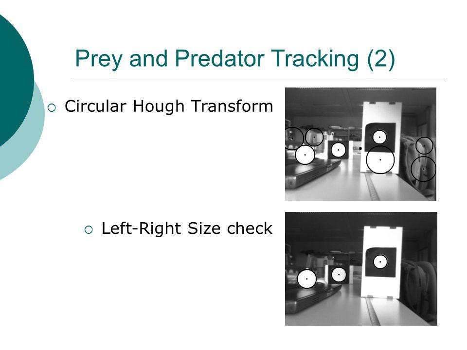 Prey and Predator Tracking (2)  Circular Hough Transform  Left-Right Size check