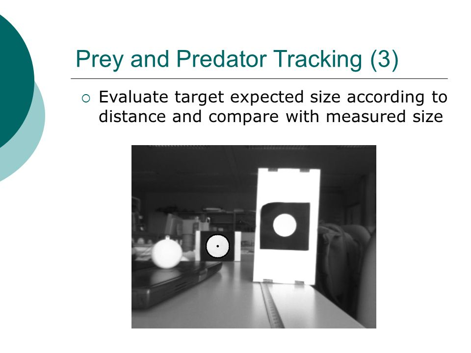 Prey and Predator Tracking (3)  Evaluate target expected size according to distance and compare with measured size